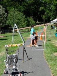 Photo taken during warm weather of an obstacle course that trainers use to teach dogs how to lead their eventual companions.