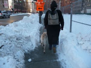 Photo of Beth and her guide dog making their way through a shoveled, tunnel-like path.