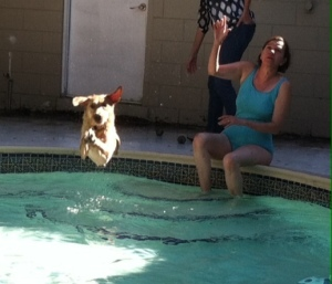 That's Whitney leaping into the water to chase the ball I just threw.
